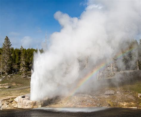 Geysers - Yellowstone National Park (U