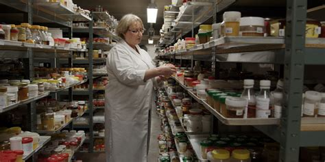 Review: 'Rotten' Documents the Shadowy Network of Food