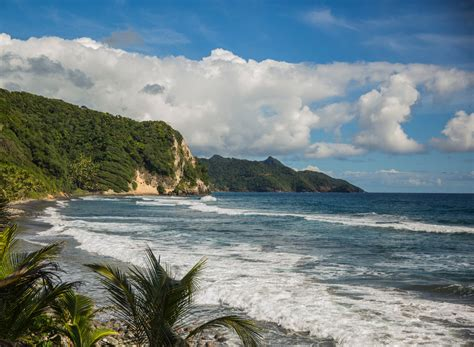 Air Travel News: Dominica Flights; United Cocktails - The