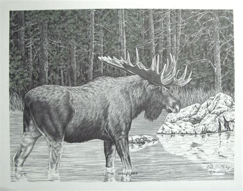 Western Pencil Art Print With Water Color - The Wanderer