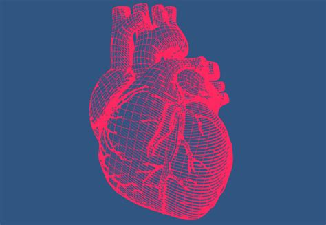 How to mend broken hearts | Imperial News | Imperial