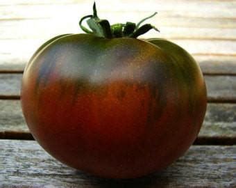 Paul Robeson Tomato – Mary's Heirloom Seeds